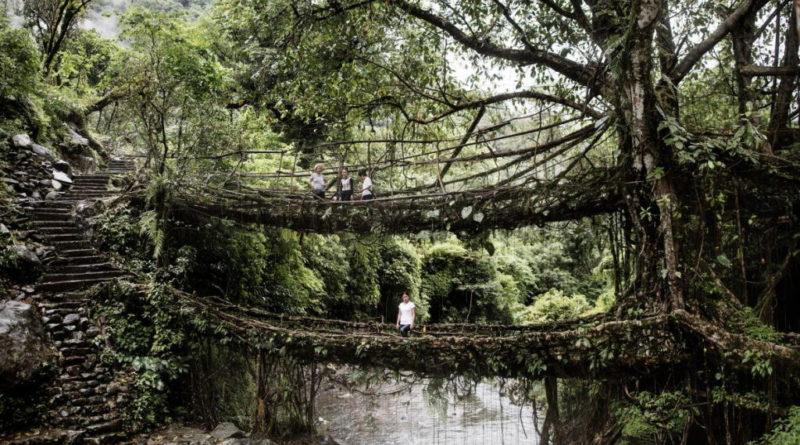 γέφυρες ίνδια