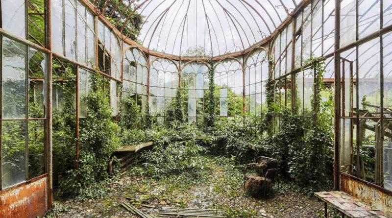 εγκαταλλειμένα κτήρια γίνονται δάσος